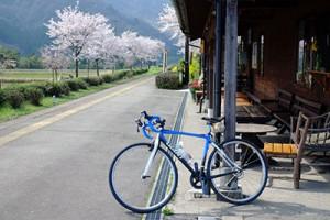 南阿蘇鉄道・長陽駅の桜
