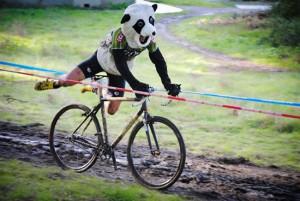 SSCXWCに参加中のパンダ