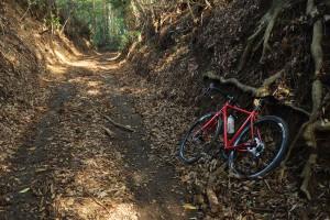 湿り気路面の林道【KONA Roadhouse - size 49cm】